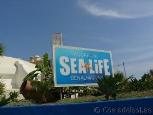 Sea life i Benalmadena